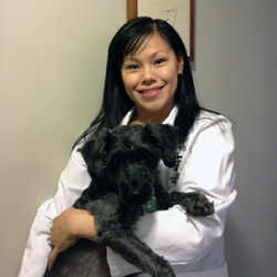 People for Animals Veterinarian Dr. Pui Chi Chang