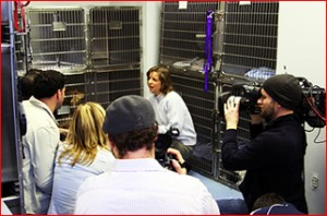 Diane O'Donnell and Nellie With Animal Planet Crew